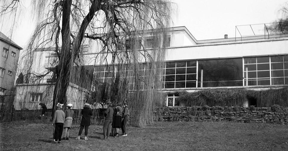 Fachada al jardín (1959)